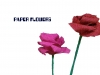paper-flowrs