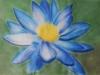 flower_study_mix_media